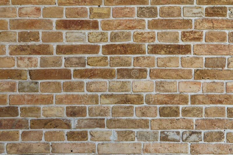 Främre sikt av tegelstenväggen fotografering för bildbyråer