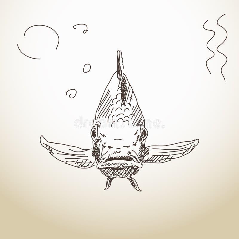 Främre sikt för fisk stock illustrationer