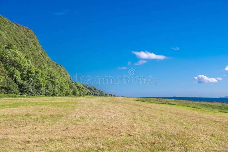 Från harklande Craig Woods till den Portencross fjärden och Ailsa Craig i det avlägsna disiga avståndet på det skotska sommarsols royaltyfria bilder