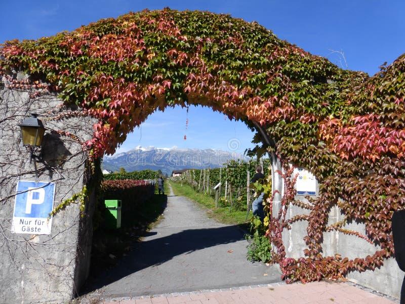 Från Liechtenstein härligt land arkivbild