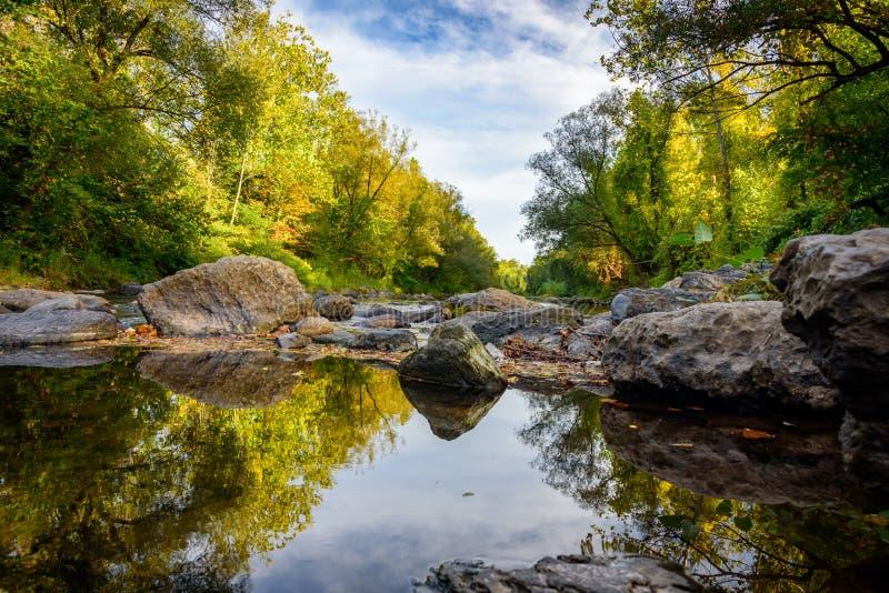 Från pöl till dammet Reflexioner inom The Creek royaltyfri fotografi