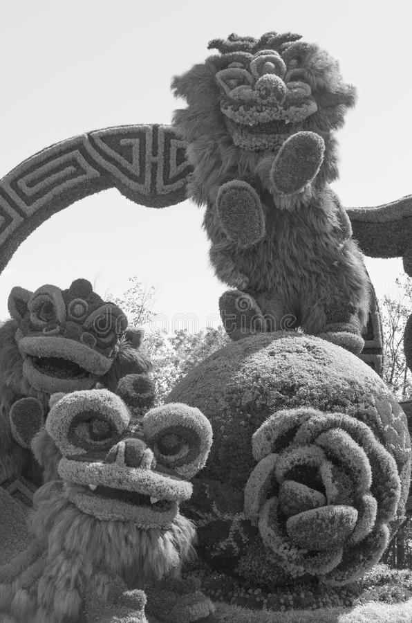 Från Shanghai: Glad beröm av de nio lejonen royaltyfria foton