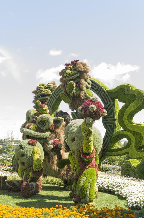 Från Shanghai: Glad beröm av de nio lejonen arkivfoto