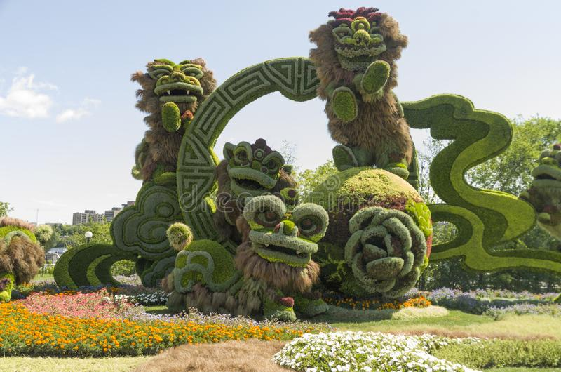 Från Shanghai: Glad beröm av de nio lejonen royaltyfri fotografi