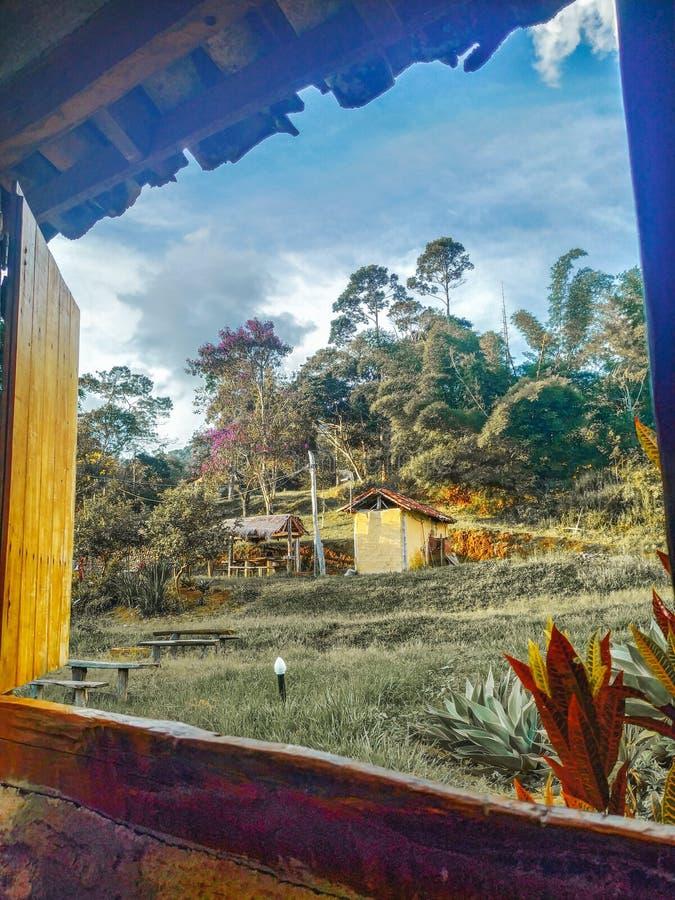 Från sidofönstret royaltyfri bild