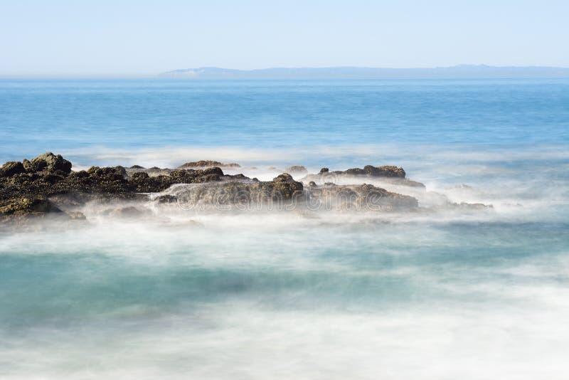 Frånlands- havrev arkivbild