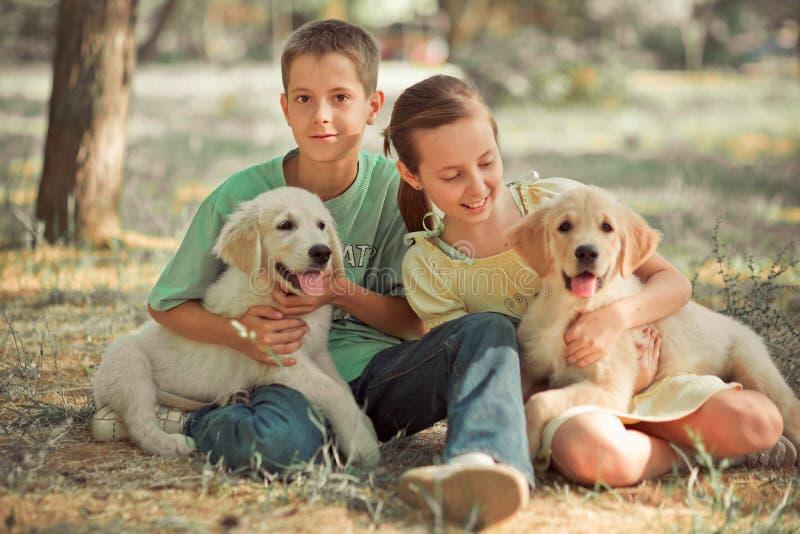 Frère de soeur de jeune adolescent de scène de chiot de chien d'arrêt le beau ont plaisir à poser des vacances d'heure d'été avec photo libre de droits