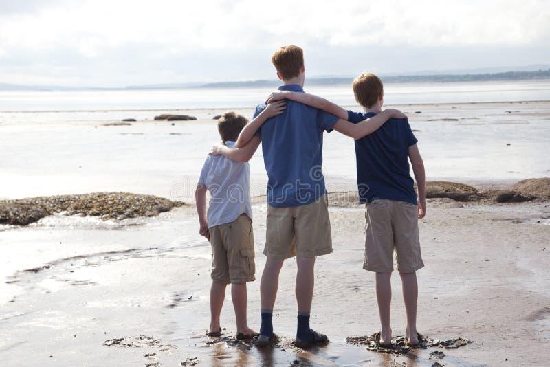 Frères à la plage photographie stock libre de droits