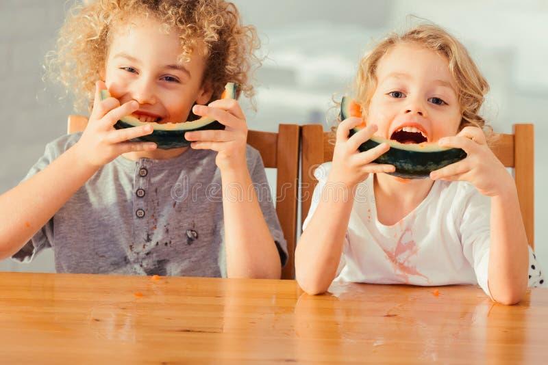 Frères mangeant la pastèque photo stock