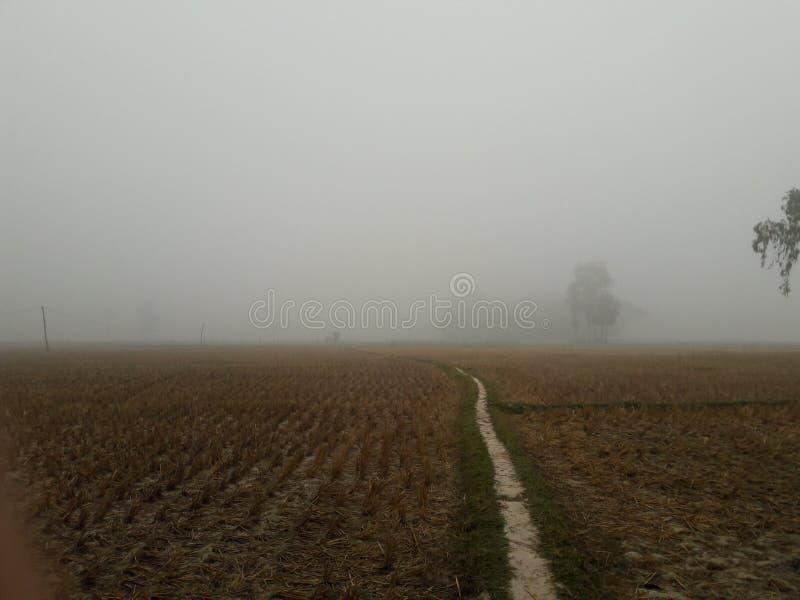 frío de niebla del invierno imagen de archivo