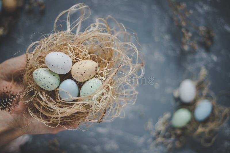 Fröhliche Ostern Hände, die Ostereier im Nest mit Ostern-Dekoration, Draufsicht halten lizenzfreie stockfotos