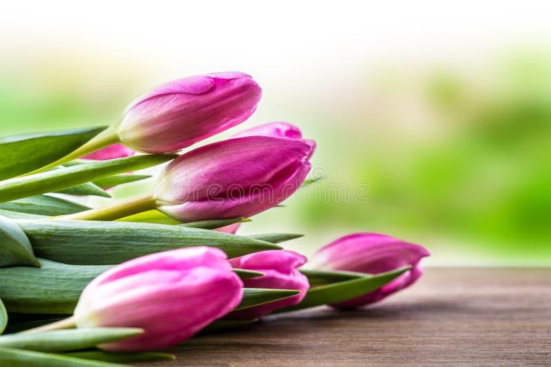 Fröhliche Ostern Mehrfarbige Frühlingstulpen und Ostereier Frühlings- und Ostern-Dekorationen lizenzfreie stockfotografie