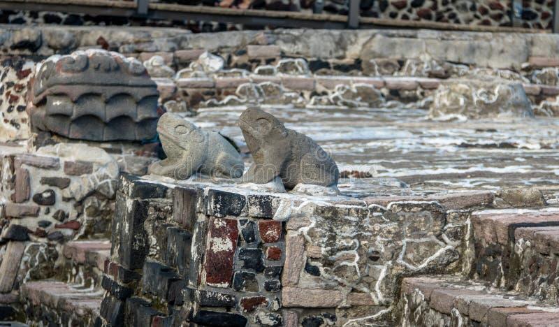 Frösche und Schlangen-Hauptskulpturen in aztekischem Tempel Templo Bürgermeister an den Ruinen von Tenochtitlan - Mexiko City, Me stockbilder