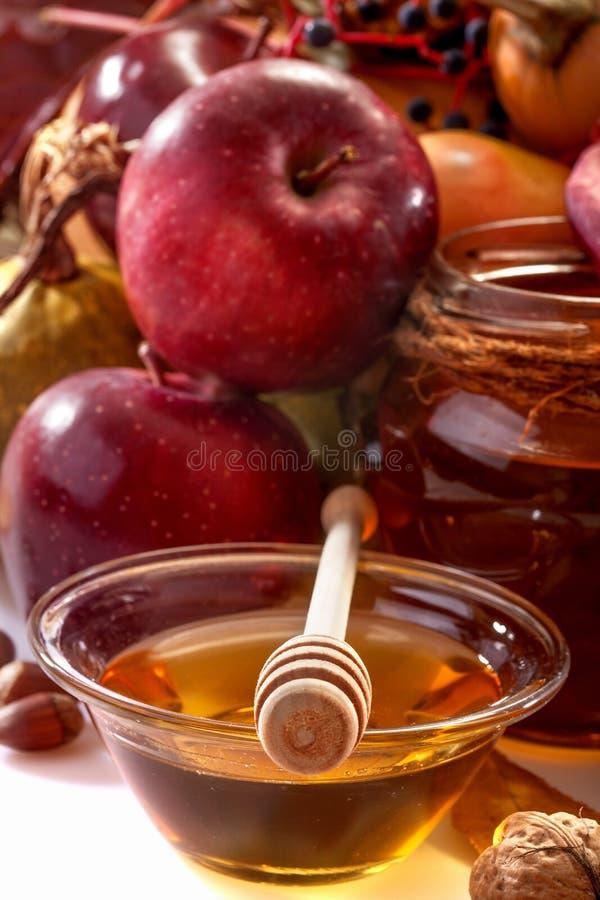 Früchte des Herbstes lizenzfreie stockfotos