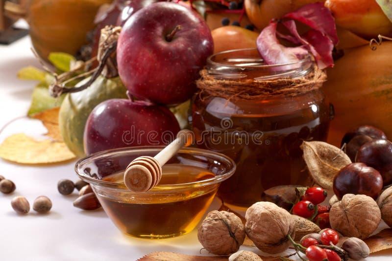 Früchte des Herbstes lizenzfreies stockbild