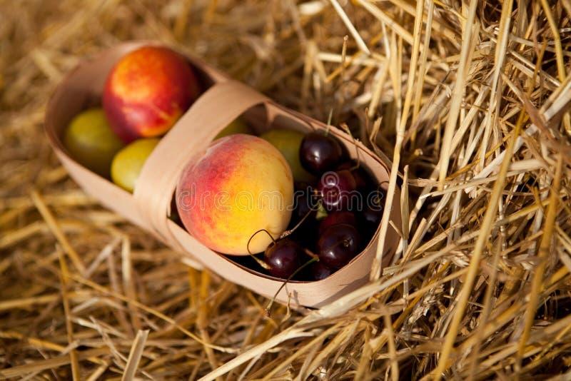 Früchte im Korb stockfotografie