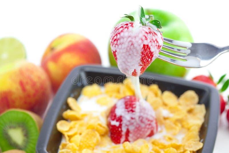 Früchte und Flocken in einer Schüssel stockfoto