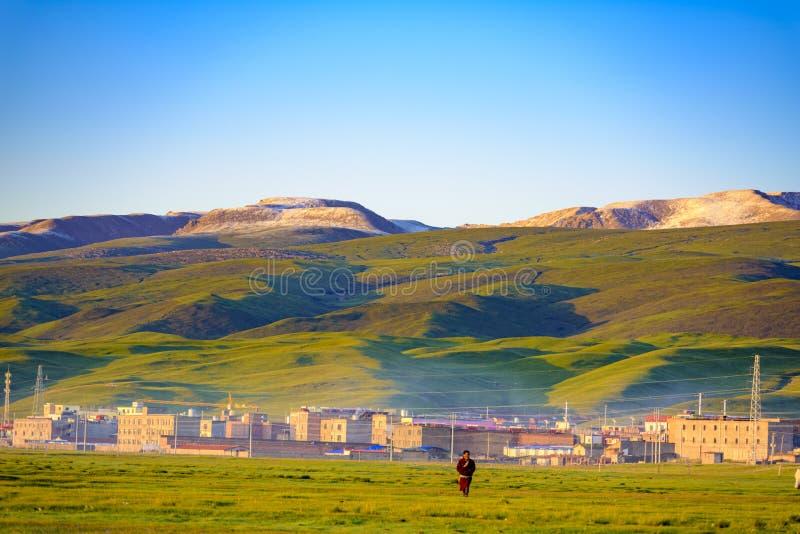 Früh morgens, geht ein männlicher Hirt auf die Wiese, Qinghai-Provinz, China lizenzfreie stockbilder