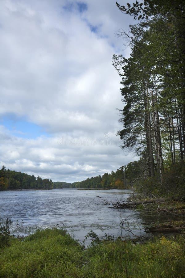 Frühe Zeichen des Falles in halsbrecherischem Teich im Verband, Connecticut lizenzfreie stockfotografie