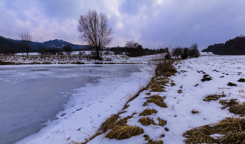 Früher Abend in gefrorenem Teich stockbilder
