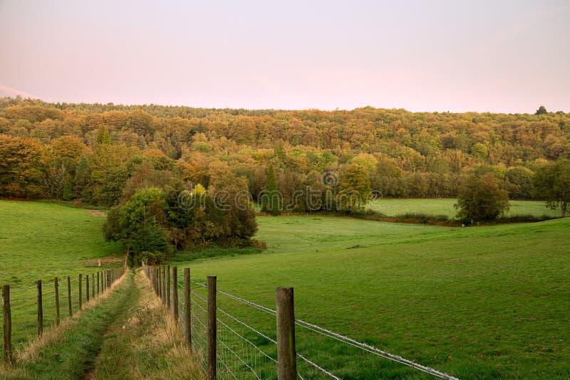 Früher Herbst in Surrey stockfoto