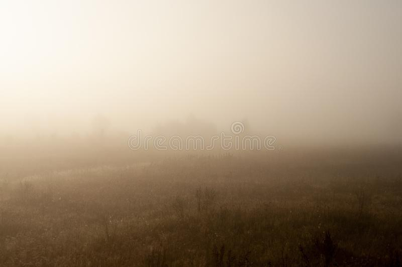 Früher Morgen auf dem Gebiet mit Herbstnebel und Wassertropfen in der Luft Tönungen des Brauns Nichts konnte weit weg sehen Beaut stockbild