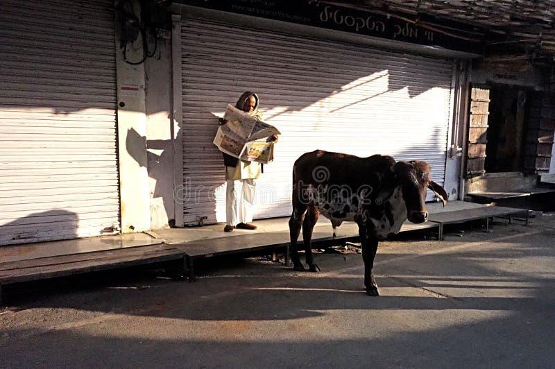 Früher Morgen-Indien-Mann liest Zeitung lizenzfreie stockbilder