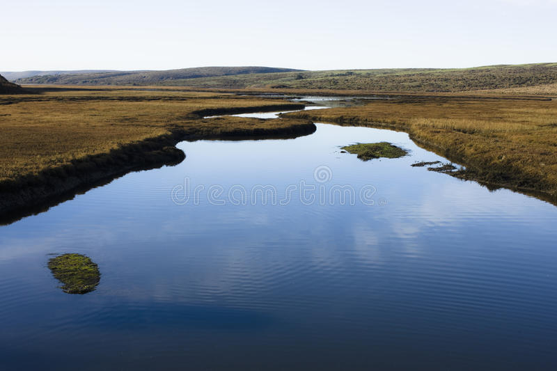 Früher Morgen-Landschaft, Punkt Reyes, Kalifornien lizenzfreie stockbilder