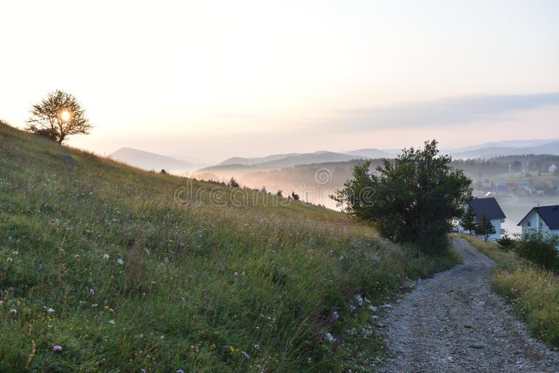 Früher Morgen, Sonnenaufgang und die kleine Kiesdorfstraße und die Sonne, die durch den Baum scheinen lizenzfreie stockfotos