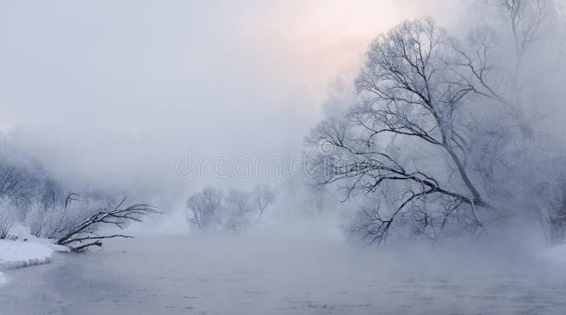 Früher Sonnenaufgang über den Bäumen bedeckt mit Hoar nahe einem Fluss lizenzfreie stockbilder