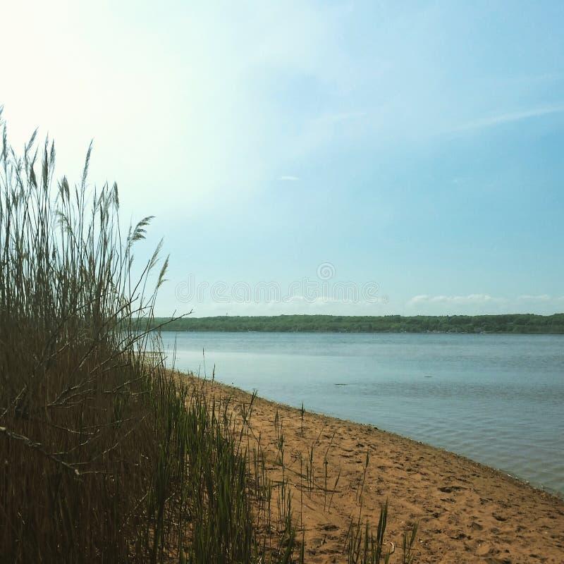 Frühjahr auf dem Ufer lizenzfreies stockbild