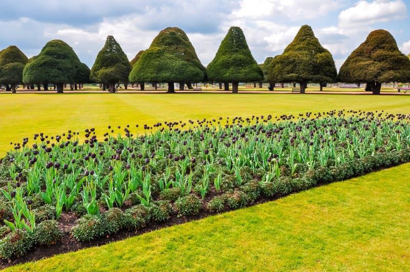 Frühjahr in Hampton Court Gardens, London, Vereinigtes Königreich lizenzfreie stockbilder