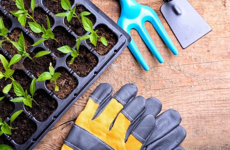 Frühjahr und Gartenarbeit lizenzfreie stockfotografie
