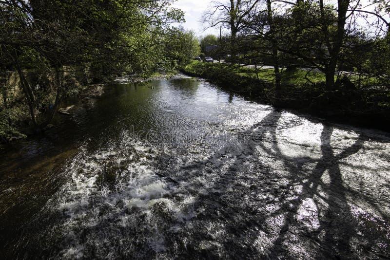 Frühjahransicht des Flusses Skell in North Yorkshire lizenzfreie stockbilder
