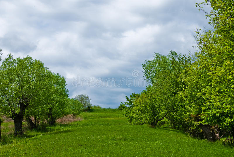 Frühjahrlandschaft stockfoto