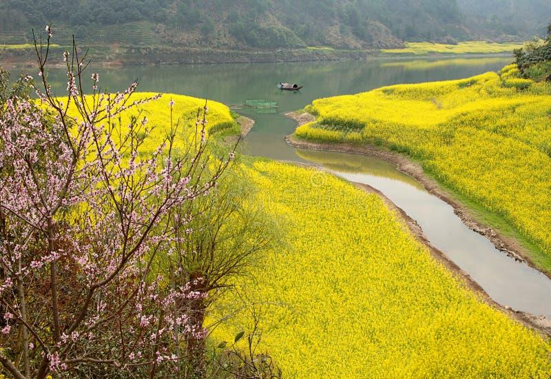 Frühling auf einem Fluss stockfotografie