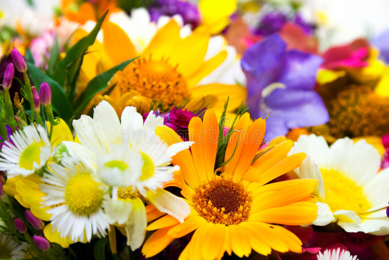 Frühling blüht Blumenstrauß stockbilder