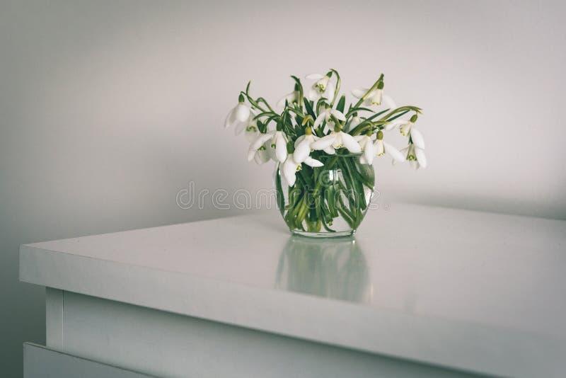 Frühling blüht in einem Vase auf Leuchtpult im Reinraum - Weinlese stockfoto