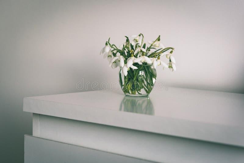 Frühling blüht in einem Vase auf Leuchtpult im Reinraum - Weinlese lizenzfreie stockfotos