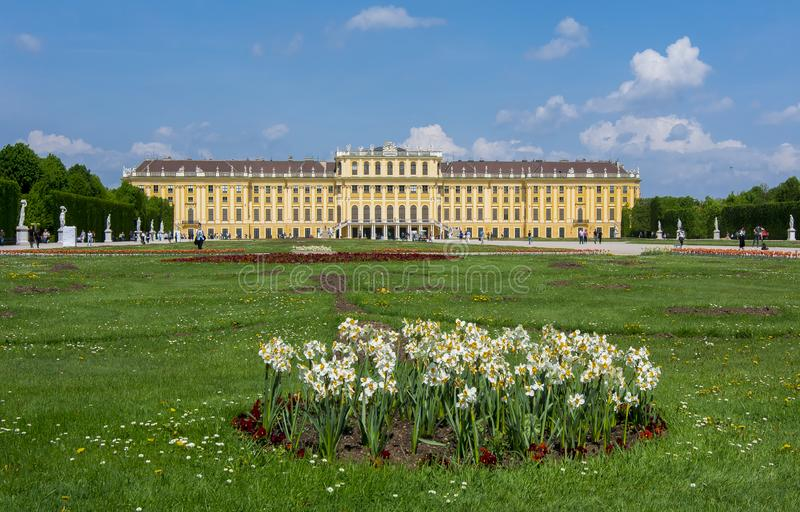 Frühling blüht in Schonbrunn-Gärten, Wien, Österreich stockbild