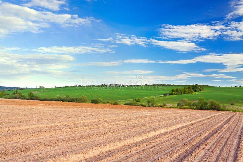 Frühling der Landschaft mit gepflogenem Feld lizenzfreies stockbild