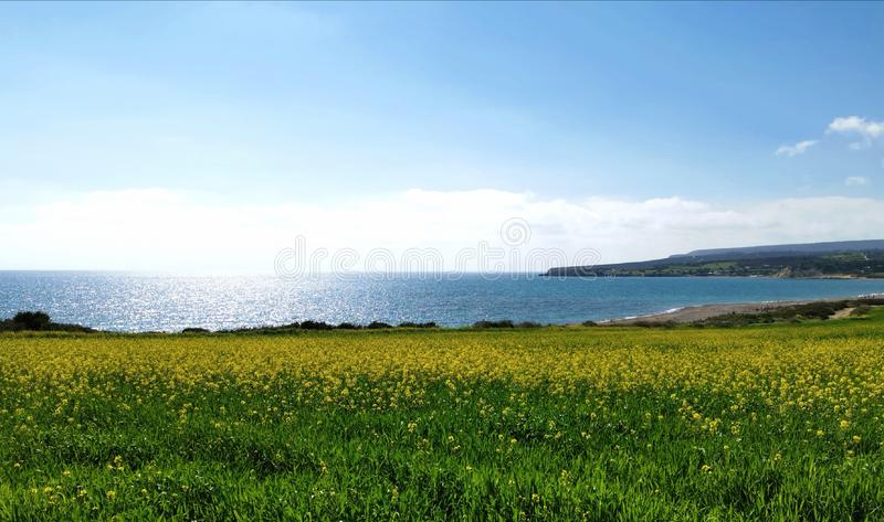 Frühling durch das Meer lizenzfreie stockbilder