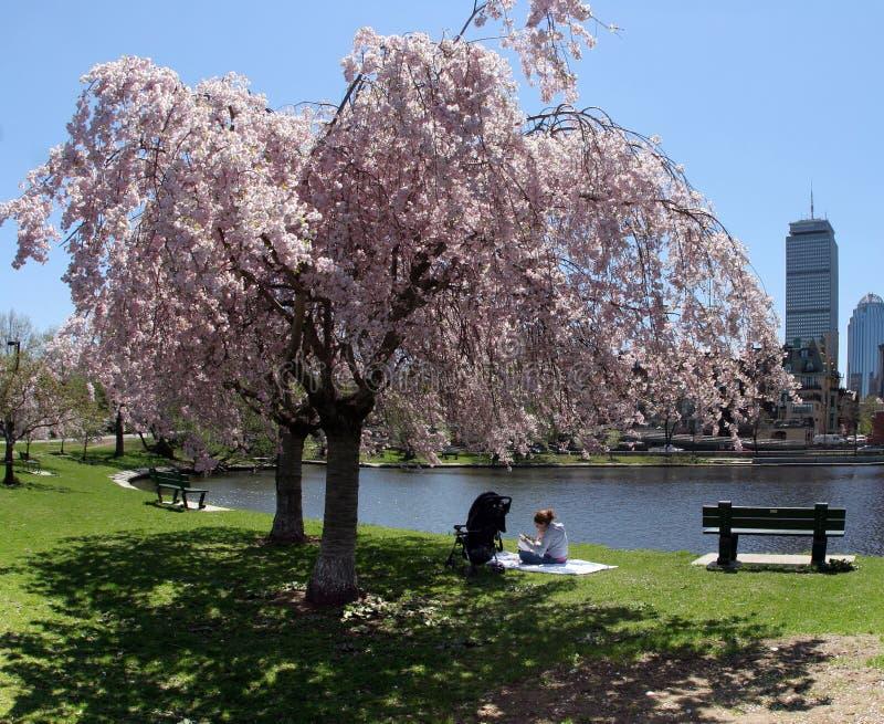 Frühling in einer Stadt lizenzfreies stockfoto