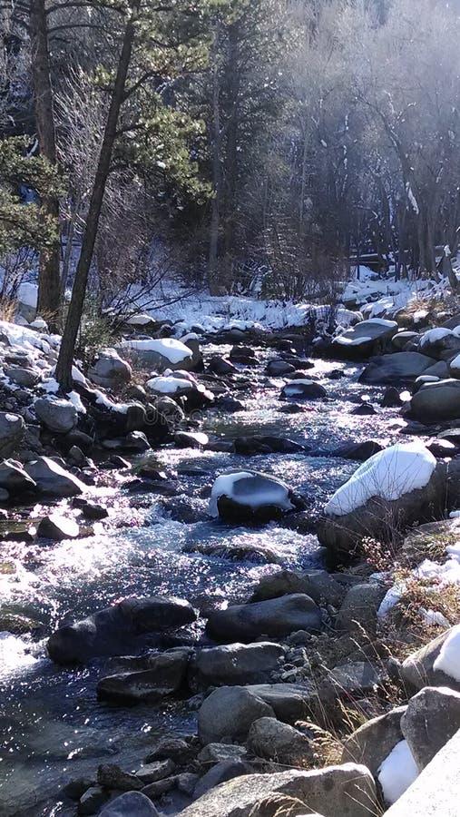 Frühling in Fern-Colorado stockbild