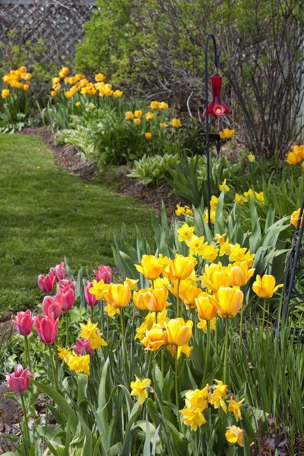 Frühling Gardeb lizenzfreie stockfotografie