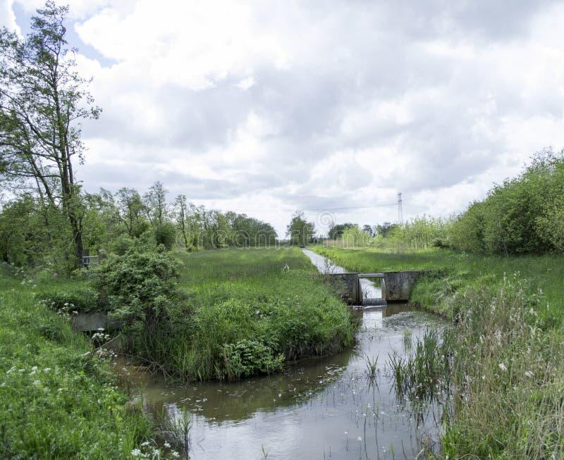 Frühling in Holland stockfotos