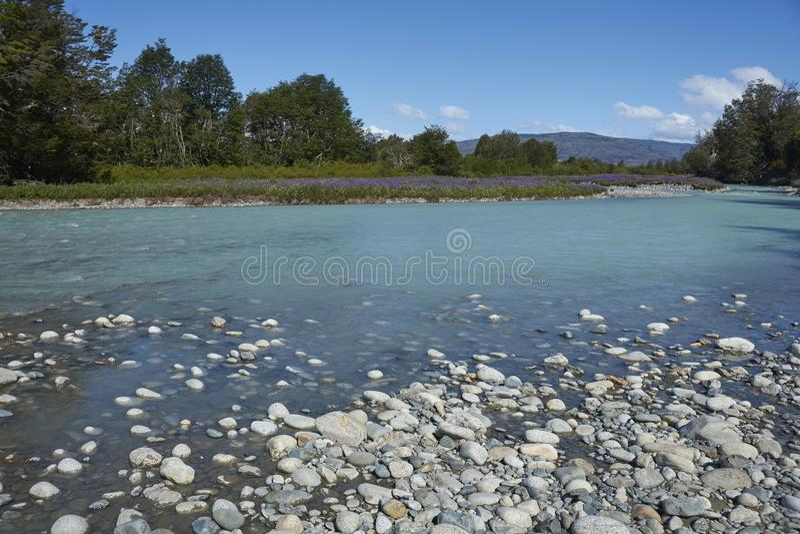 Frühling im Patagonia entlang dem Carretera Austral stockbild