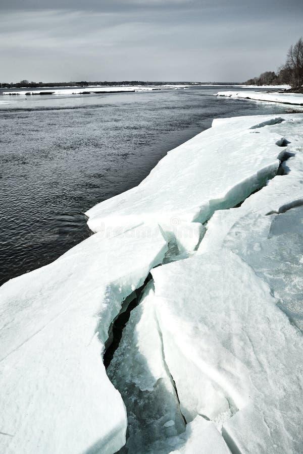 Frühling kommt in Sibirien Eiszerstampfungen auf dem Fluss, Baumstände ohne Blätter lizenzfreie stockfotografie