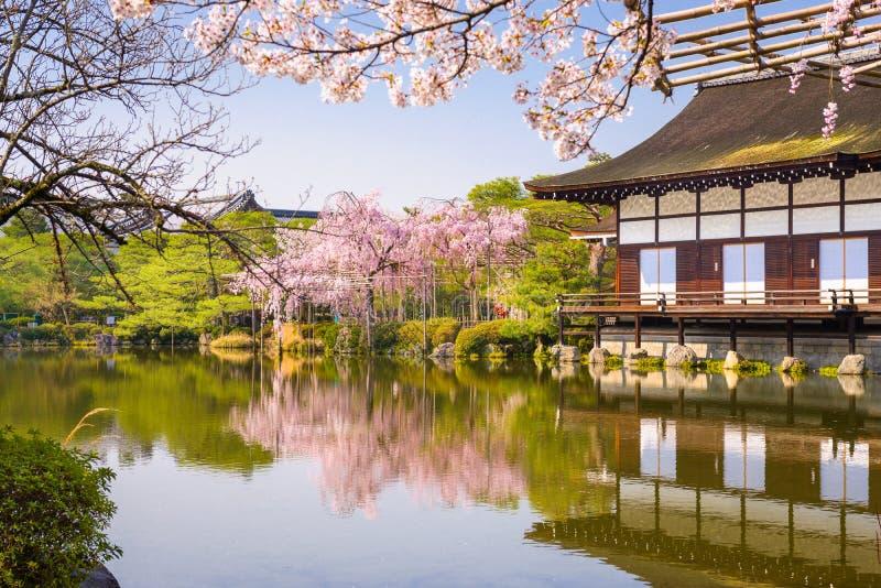 Frühling Kyotos, Japan am Teichgarten Heian-Schreins stockfotografie