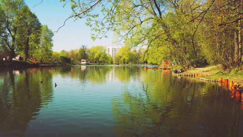 Frühling in Moskau stockfotografie